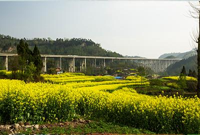 万源(陕川界)至达州(徐家坝)段高速公路