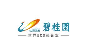 碧桂园控股有限公司